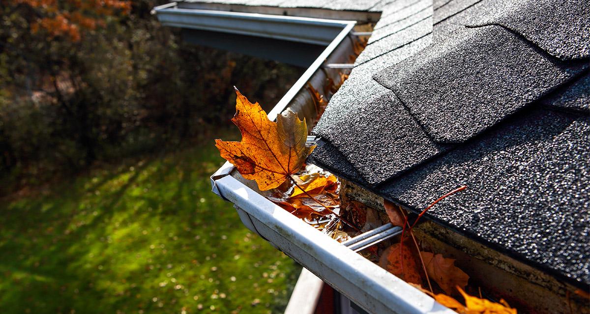 dachrinnenreinigung muenchen dachdecker 02 - Dachrinnen München